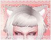 White Tiny Neko Ears
