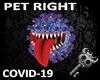 K  COVID-19 Pet Right