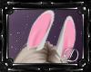 .:D:.Bad Bunny Ears
