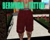 BERMUDA + TATTOO