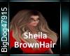 [BD]SheilaBrownHair