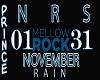 NOVEMBER RAIN / SHM