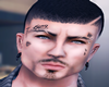 [E] Stv Head