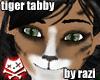 Tiger Tabby Tail (M&F)