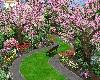 Skys Secret Garden