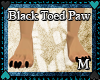 Blck toes claws *M*