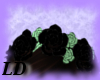 Mint Black Roses band