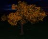 Autumn Tree {F}
