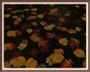 * Autumn Leaves
