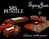 BUNDLE 4 Piece Spa Group