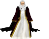 [ML]Wizard Robe