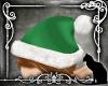 *SK* Santa's Elf Hat
