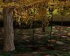 ~CR~ Tree Swing