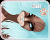 [Pets] Dexi | hair v5