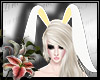 (LN)Yelow Bunny Ears