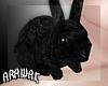 ak. shoulder bunny F
