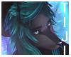 Raven |  Fur