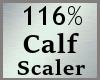 116% Calves Scale MA