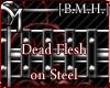 [B.M.H]DeadFleshOnSteel