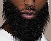 Hustlah Beard