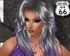 SD Ctarina Grey Purple
