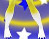 Starry Night Paws M
