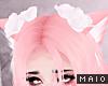 🅜 PINKU: white roses