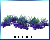 🌾 Sea Grass