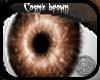 SR Cosmic Brown eyes