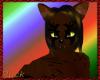 Dark Tiger cat fur M