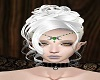Elegant silverish hair
