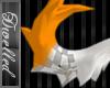 -Dw- Sporange Tail