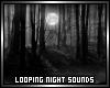 Night Sound Effect