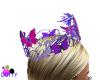 Butterflies purple crown