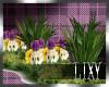 {LIX} Garden Flowers