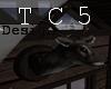 AS-mounded deer head