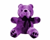 !Em Teddy Bear Purple