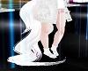 White Arabian Tail Tails