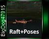 [BD]Raft+Poses