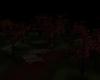 *RM* dark woods