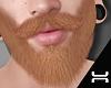 ♛.Beard.LM