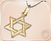 !NC Star of David Neckl