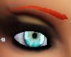 redheard eye brown