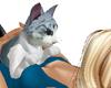 YAGO CAT PILLOWS