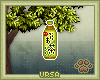 U. Green Tea