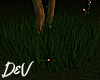 !D Tall Grass