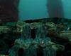 Ocean Life 4