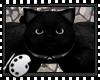 (*A) Stuffed Cat Rug Bk