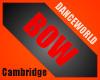 Cambridge Academy Bow