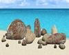 rock kaya
